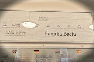 Casa Memoriala Stefan Baciu