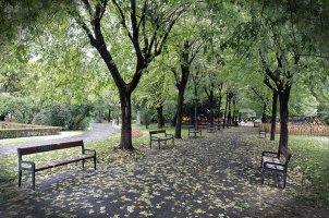Le Parc Central Nicolae Titulescu