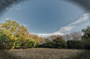 La réservation, le bois et les marais eutrophes de Prejmer